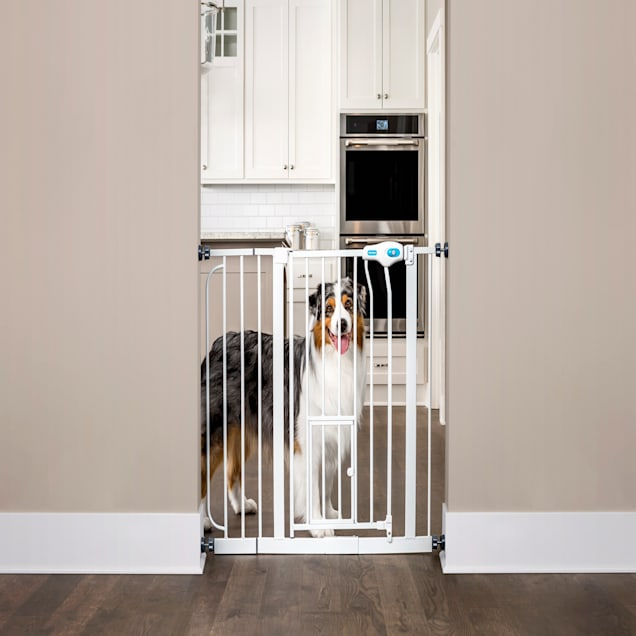 """Carlson Pet Products Extra Wide Walk-Thru Pet Gate with Door, 39""""-38.5"""" W x 30"""" L - Carousel image #1"""