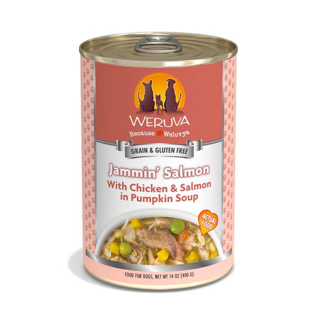 Weruva Classics Jammin' Salmon with Chicken & Salmon in Pumpkin Soup Wet Dog Food, 14 oz., Case of 12 - Carousel image #1