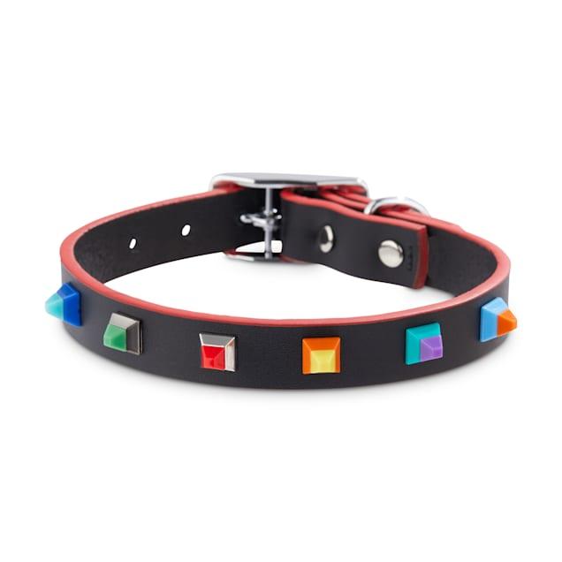 Bond & Co. Designer Stud Dog Collar, Small - Carousel image #1