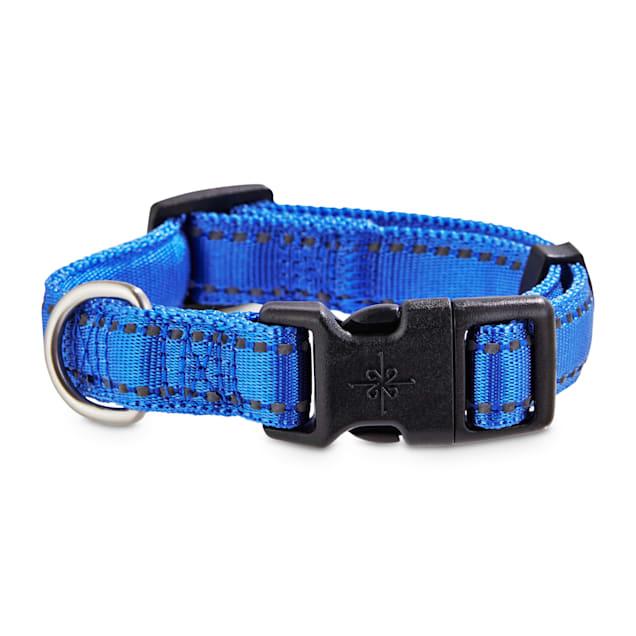 Good2Go Reflective Blue Dog Collar, Small - Carousel image #1