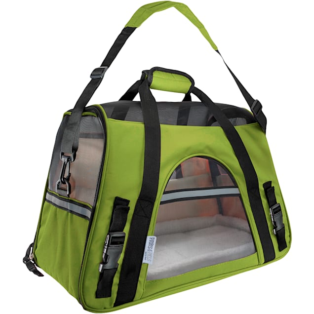 Paws & Pals Green Pet Carrier, Large - Carousel image #1