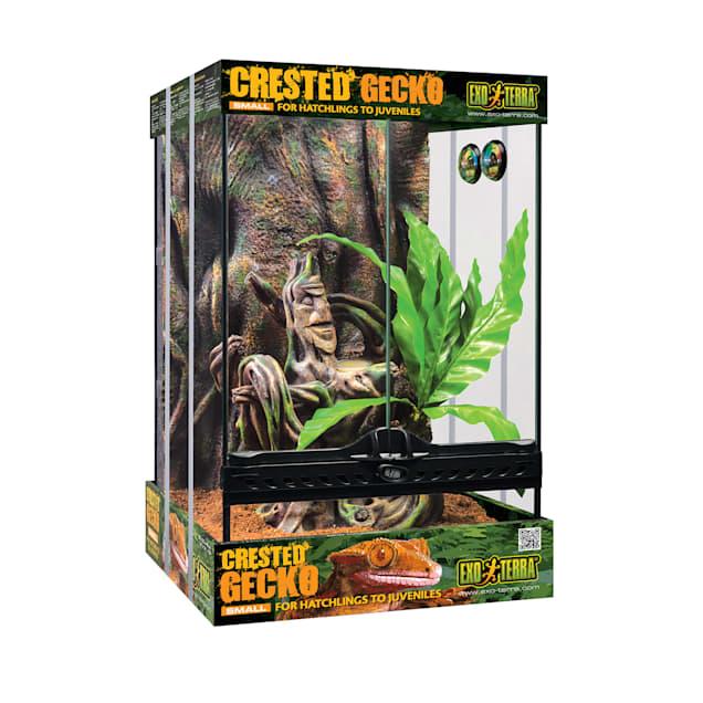 Exo-Terra Crested Gecko Kit - Carousel image #1