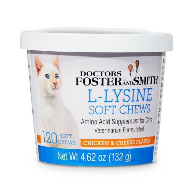 Drs. Foster and Smith L-Lysine Soft Chews for Cats, Count of 120 - Carousel image #1