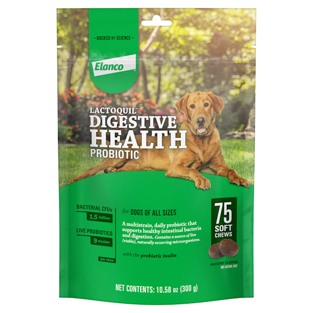 Bayer Lactoquil Soft Chews Digestive Health Probiotic Supplement for Dogs, Count of 75 - Carousel image #1