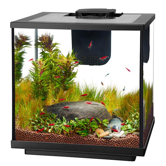 Aqueon LED 7.5 Gallon Shrimp Aquarium Kit - Carousel image #1