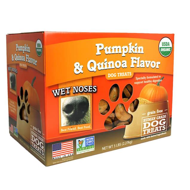 Wet Noses Grain Free Pumpkin Quinoa Dog Treats, 5 lbs. - Carousel image #1