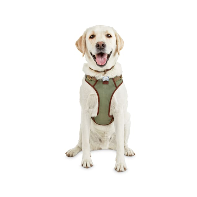 Reddy Green Dog Harness, Medium - Carousel image #1