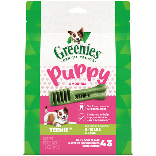 Greenies Puppy 6+ Months Teenie Size Dental Treats, 12 oz., Count of 43 - Carousel image #1