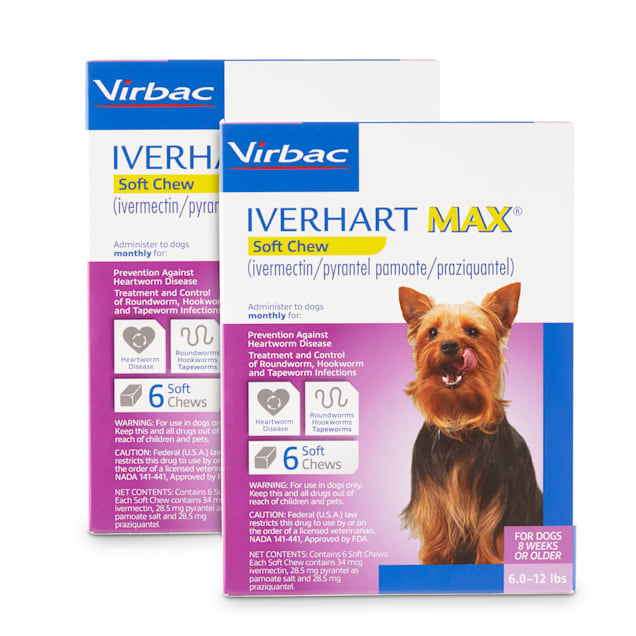 Iverhart Max Soft Chews for Dogs 6 to 12 lbs, 12 Month Supply - Carousel image #1