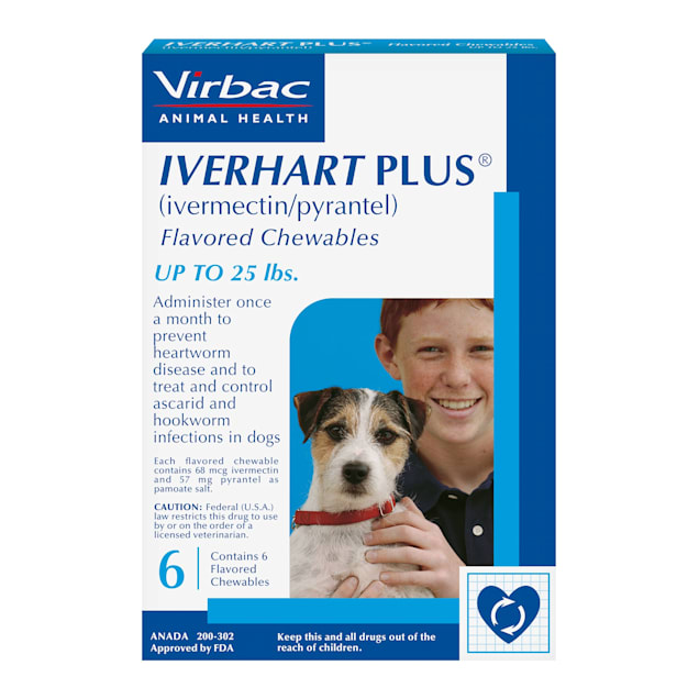 Iverhart Plus Chewable Tablets for Dogs Up to 25 lbs, 6 Month Supply - Carousel image #1