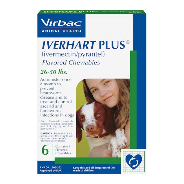 Iverhart Plus Chewable Tablets for Dogs 26 to 50 lbs, 6 Month Supply - Carousel image #1