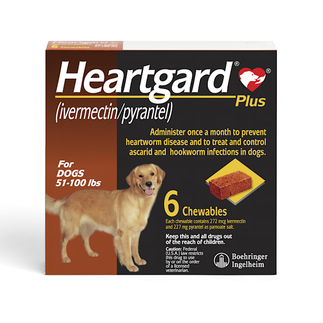 Heartgard Plus Chewables for Dogs 51 to 100 lbs, 6 Month Supply - Carousel image #1