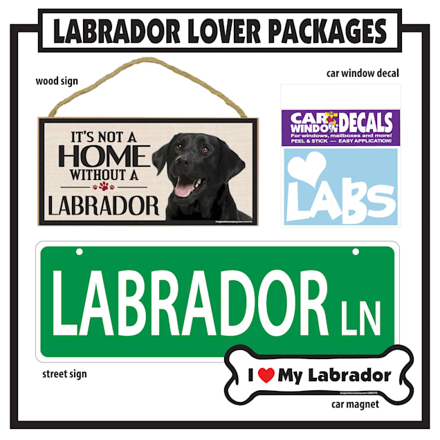 Imagine This Lab Black Gift Package - Carousel image #1