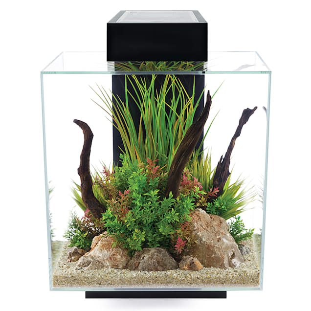 Fluval Edge 2.0 Black Aquarium Kit, 12 Gallon - Carousel image #1