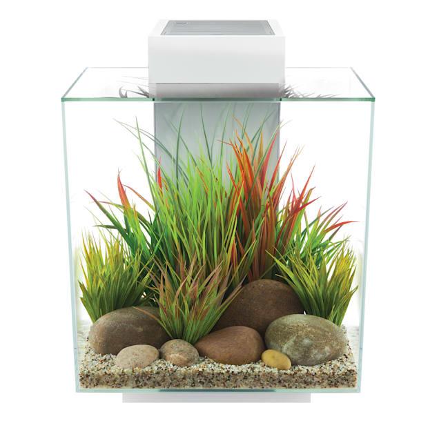 Fluval Edge 2.0 White Aquarium Kit, 12 Gallon - Carousel image #1