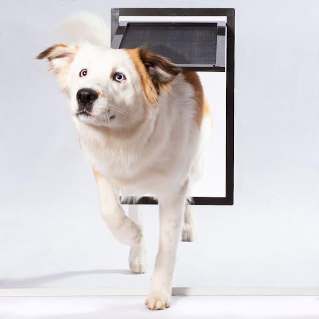 """PetSafe Large Pet Screen Door, 12"""" L X 0.93"""" W X 19.3"""" H - Carousel image #1"""