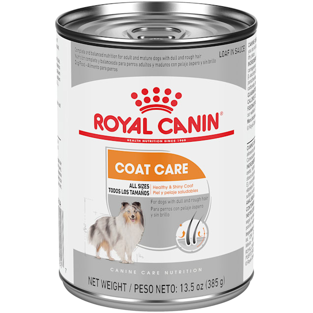 Royal Canin Canine Care Nutrition Coat Care Loaf in Sauce Canned Dog Food, 13.5 oz., Case of 12 - Carousel image #1