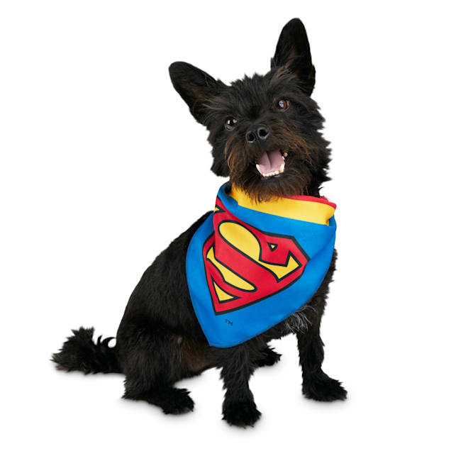 DC Comics Justice League Superman Dog Bandana, Small/Medium - Carousel image #1