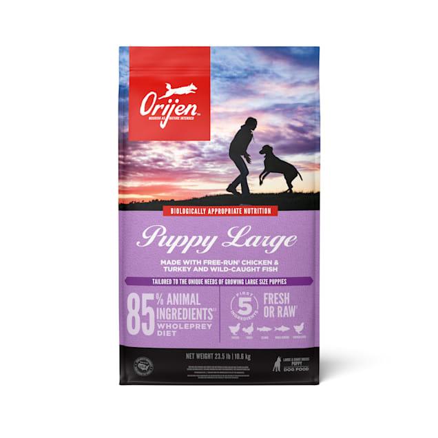 ORIJEN Puppy Large Grain Free High Protein Fresh & Raw Animal Ingredients Dry Dog Food, 25 lbs. - Carousel image #1