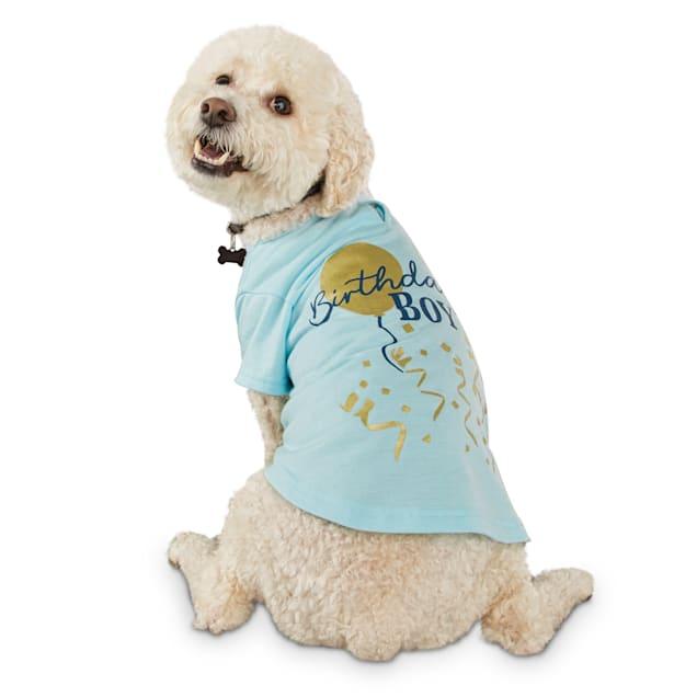 Bond & Co. Birthday Boy Dog T-Shirt, X-Small - Carousel image #1