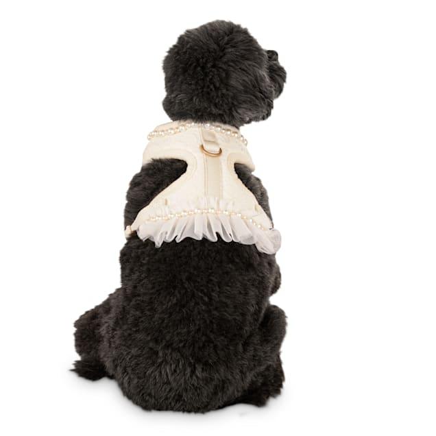 Bond & Co. Flower Girl Dog Harness, X-Small - Carousel image #1