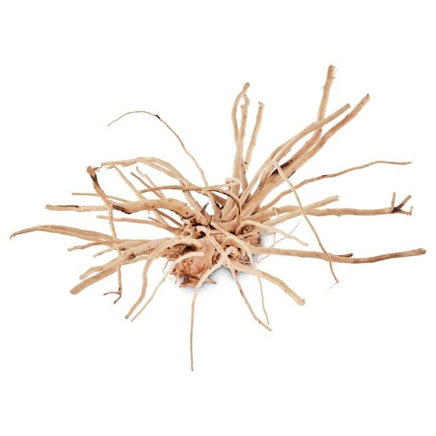 Imagitarium Spider Wood, Medium - Carousel image #1