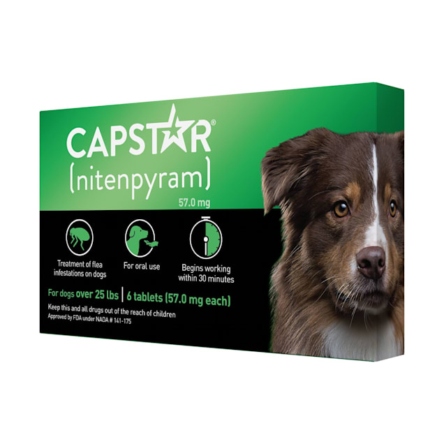 Capstar Flea Tablets for Dogs over 25 lbs., Count of 6 - Carousel image #1