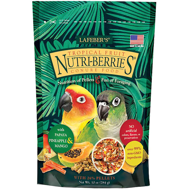 Lafeber's Tropical Fruit Nutri-Berries Dry Food for Conures, 10 oz. - Carousel image #1