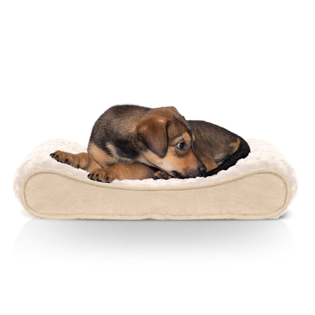 """FurHaven Ultra Plush Luxe Lounger Orthopedic Dog Bed Cream, 14"""" L x 21"""" W - Carousel image #1"""