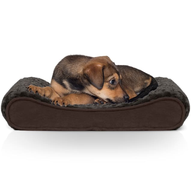 """FurHaven Ultra Plush Luxe Lounger Orthopedic Dog Bed Chocolate, 14"""" L x 21"""" W - Carousel image #1"""
