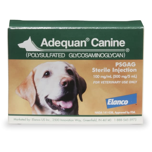 Adequan Canine 5 ml Injectable Solution for Dogs, Single Vial - Carousel image #1