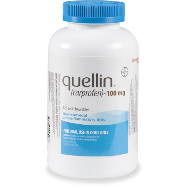 quellin 100 mg for Dogs, 120 Soft Chews - Carousel image #1