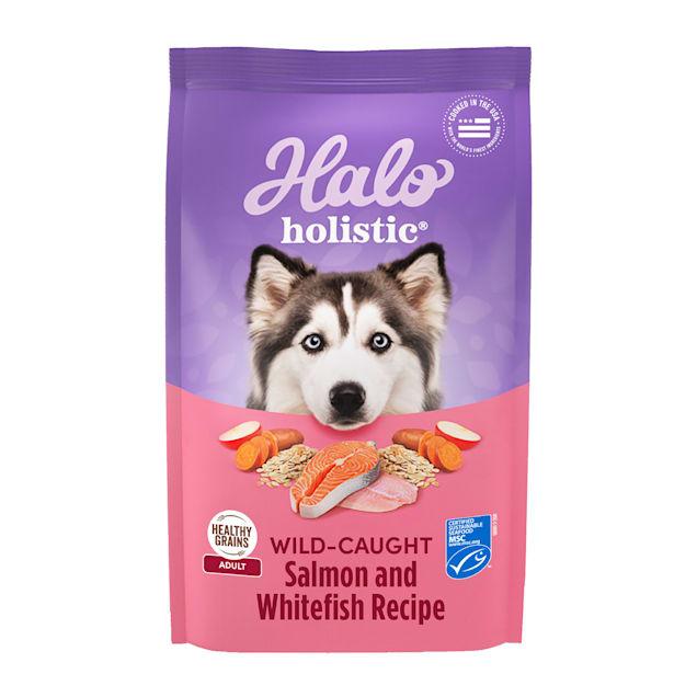 Halo Adult Holistic Wild Salmon & Whitefish Dry Dog Food, 21 lbs. - Carousel image #1