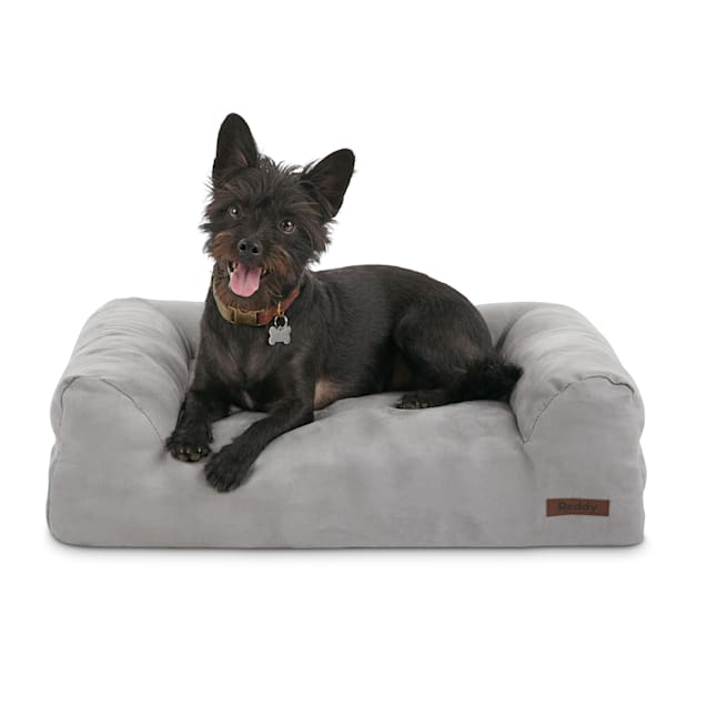 "Reddy Orthopedic Grey Dog Bed, 24"" L X 18"" W - Carousel image #1"