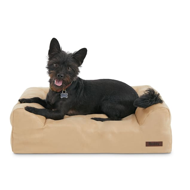 "Reddy Orthopedic Tan Dog Bed, 24"" L X 18"" W - Carousel image #1"