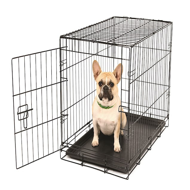 "Carlson Pet Products Small Single Door Wire Crate, 24"" L X 18"" W X 19"" H - Carousel image #1"