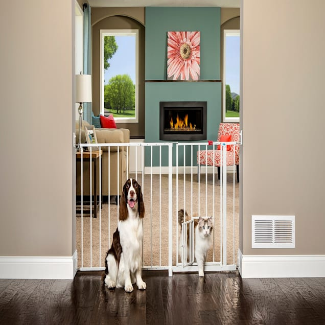 """Carlson Pet Products Maxi Gate with Pet Door, 59"""" L X 2"""" W X 30"""" H - Carousel image #1"""