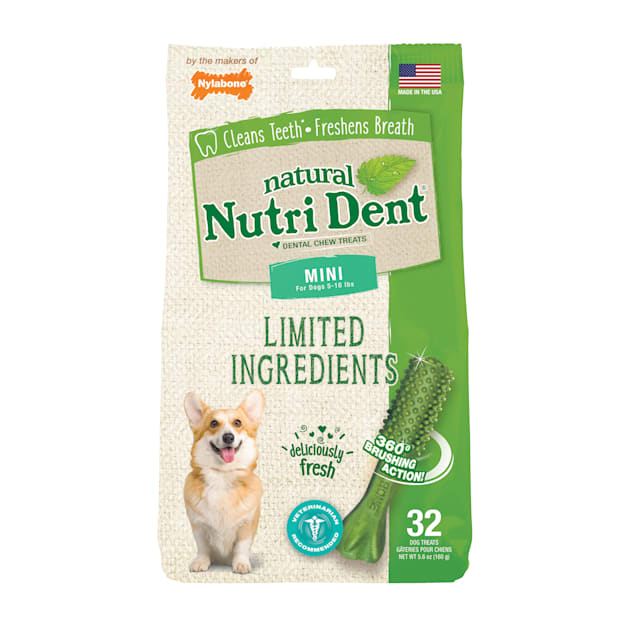 Nylabone Nutri Dent Limited Ingredients Mini Fresh Breath Dental Chews for Dogs, 5.6 oz., Count of 32 - Carousel image #1