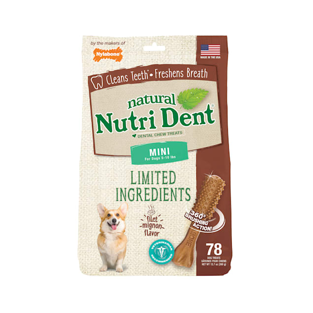 Nylabone Nutri Dent Limited Ingredients Mini Filet Mignon Dental Chews for Dogs, 13.7 oz., Count of 78 - Carousel image #1