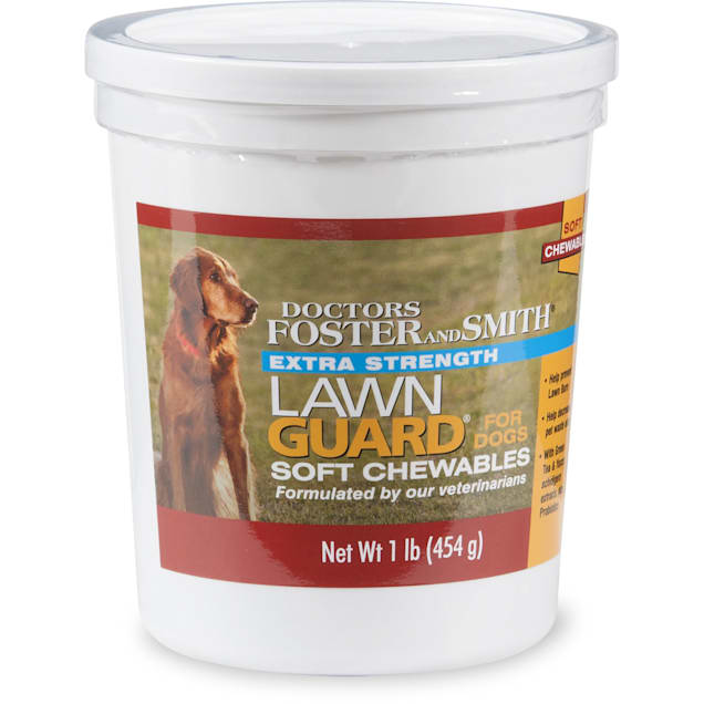Drs. Foster and Smith Extra Strength Lawn Guard Soft Chews for Dogs, 1 lb. - Carousel image #1