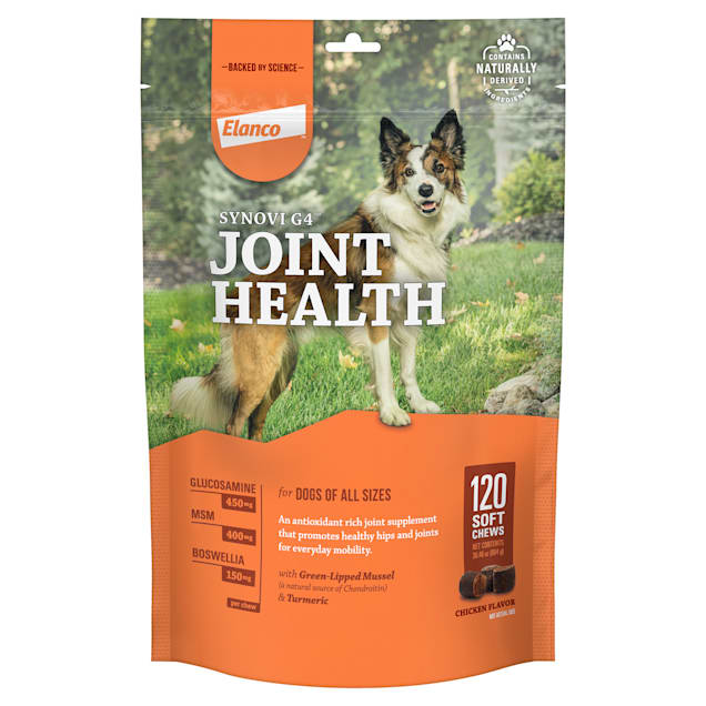 Bayer Synovi G4 Soft Chews Glucosamine Joint Supplement for Dogs, Count of 120 - Carousel image #1