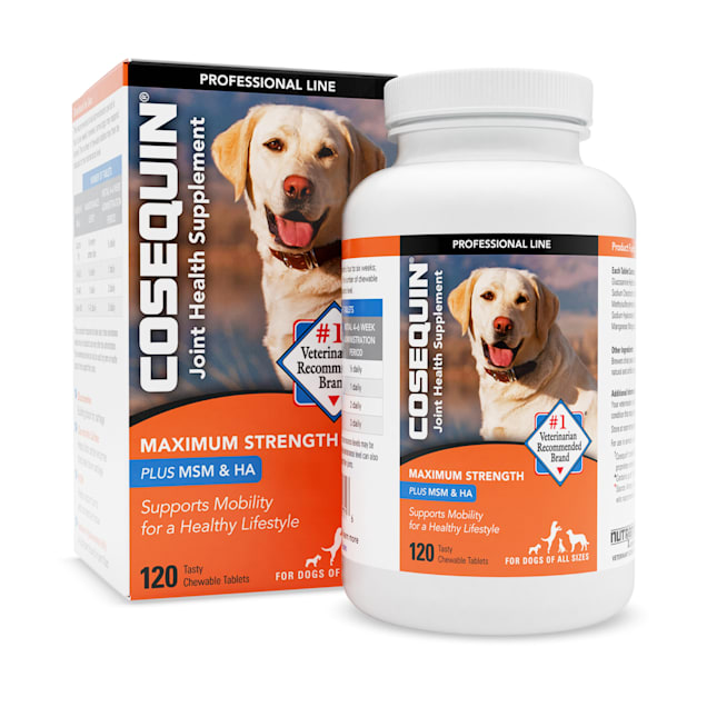 Cosequin DS Maximum Strength Plus MSM & Omega-3's Chewable Tablets, Count of 120 - Carousel image #1