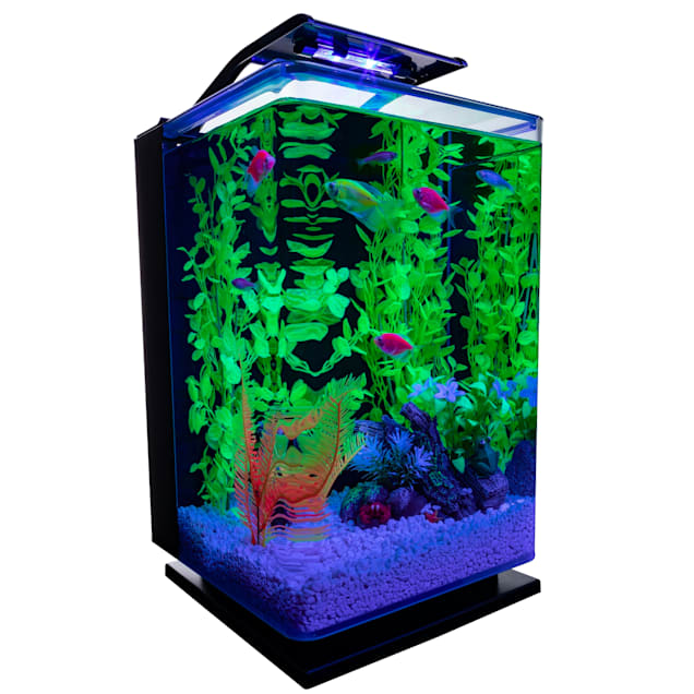 "GloFish Hinged Cycle Light and Hidden Filtration Aquarium Kit 5 Gallons, 11"" L x 11"" W x 16.25"" H - Carousel image #1"