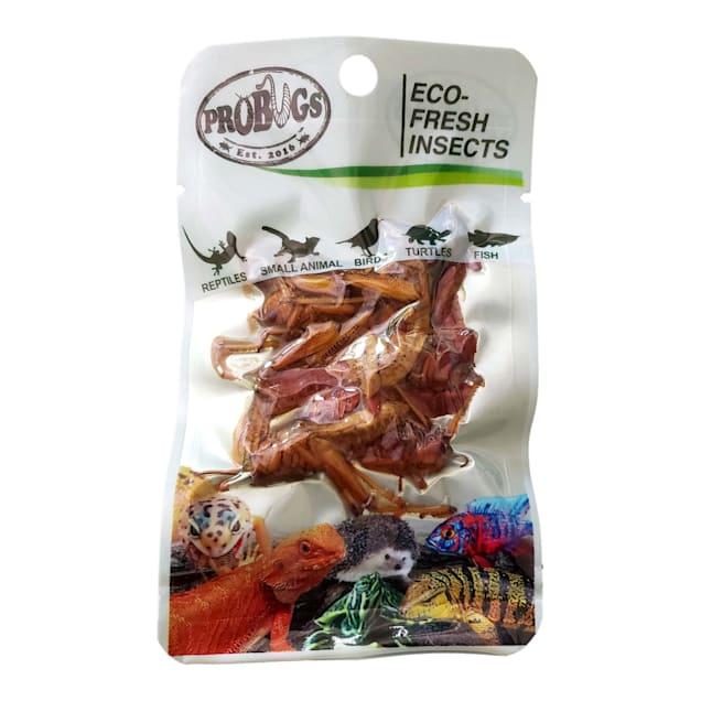 Pro Bugs Eco Fresh Grasshopper, Count of 8 - Carousel image #1