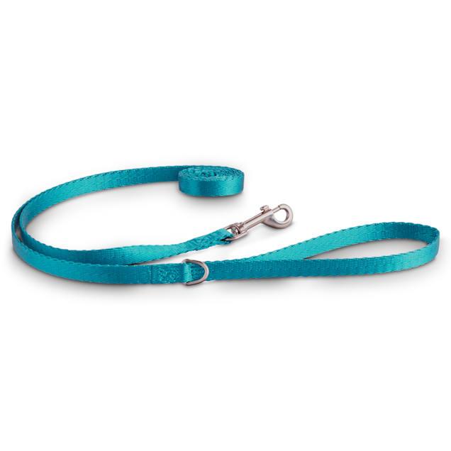 "Good2Go Turquoise Nylon Dog Leash, 1/2"" Width, 6 ft. - Carousel image #1"