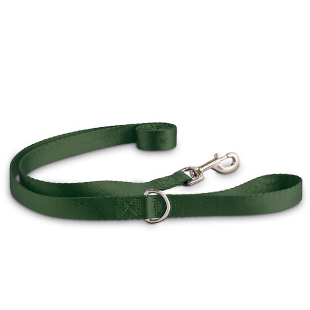 Good2Go Adjustable Dark Green Dog Leash, Medium/Large - Carousel image #1