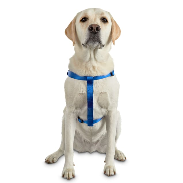 Good2Go Easy Step-In Blue Comfort Dog Harness, Large/X-Large - Carousel image #1