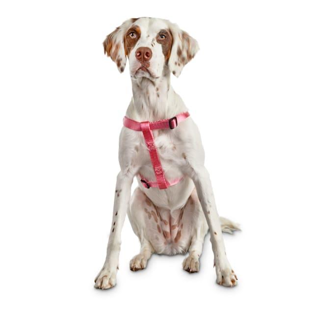 Good2Go Easy Step-In Pink Comfort Dog Harness, Medium - Carousel image #1