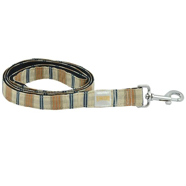 """Territory Stripe Print Nylon Pet Leash, 60"""" L - Carousel image #1"""