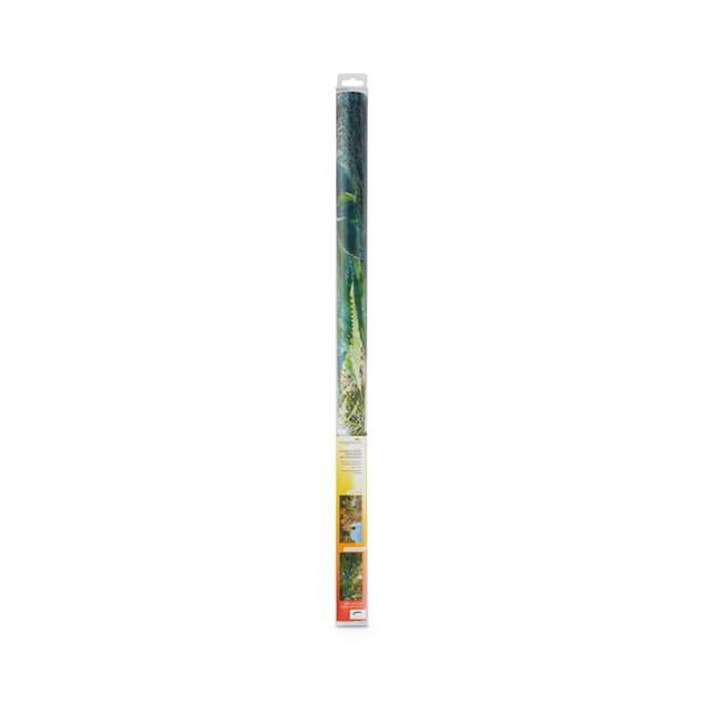 Imagitarium 40 Gallon Double-Sided Terrarium Background, Large - Carousel image #1